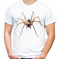 Koszulka z pająkiem domowym