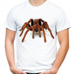 Koszulka z pająkiem Pawian Tarantula