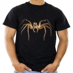 Koszulka męska z pająkiem wilczym