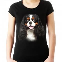 Koszulka z psem Cavalierem
