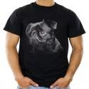 Koszulka z psem Brabantczykiem
