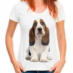 Koszulka z psem bassetem