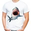Koszulka z Rekinem Shark