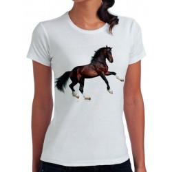 t-shirt damski z koniem KT009