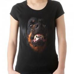 koszulka damska z rottweilerem