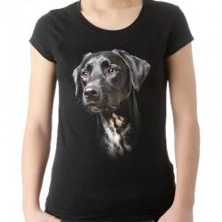 koszulka damska z wyżłem