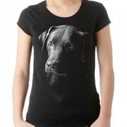 koszulka damska z głową psa